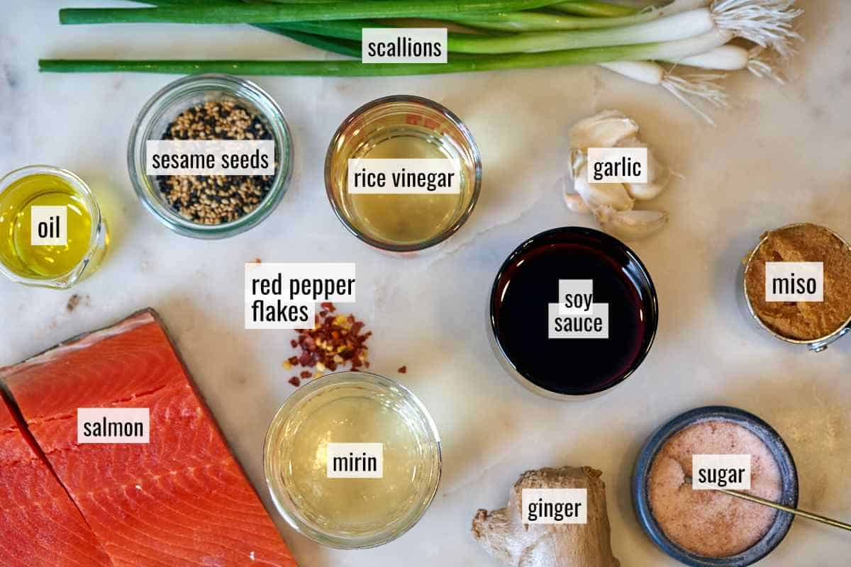 Ingredients to cook salmon on a coutnertop.