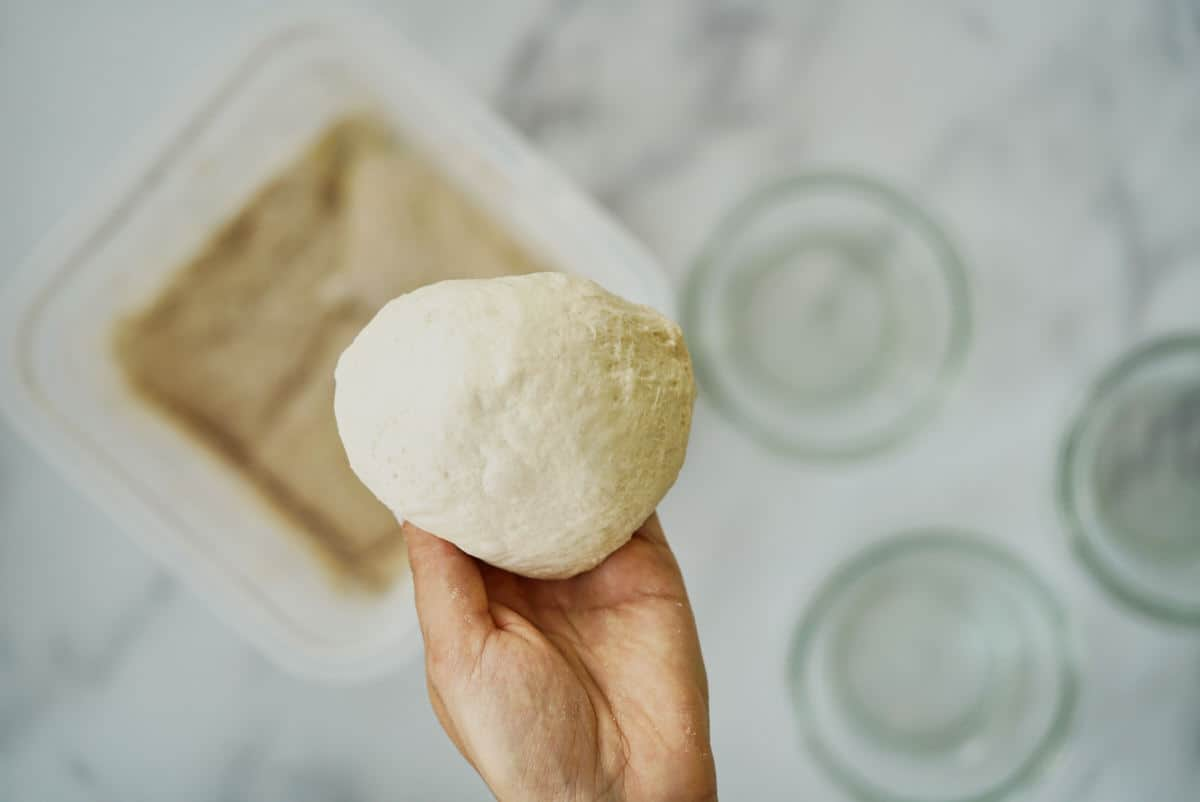Hand holding a ball of pizza dough.