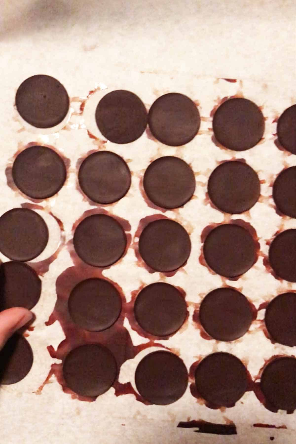 Discs of chocolate on parchment.