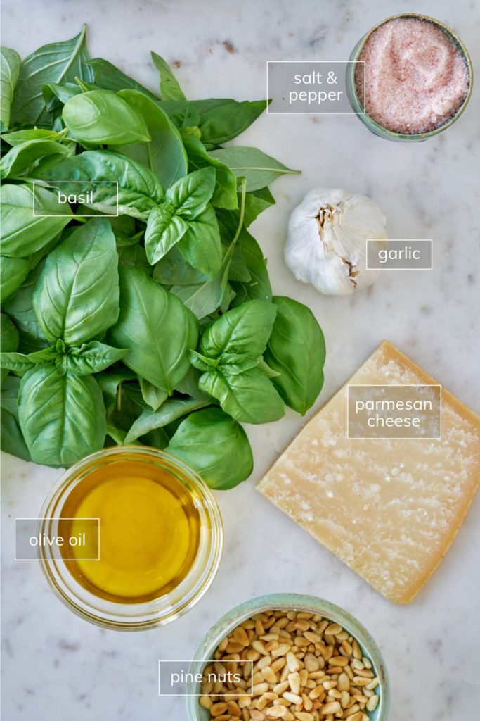 Ingredients for garlic basil pesto on a white countertop.
