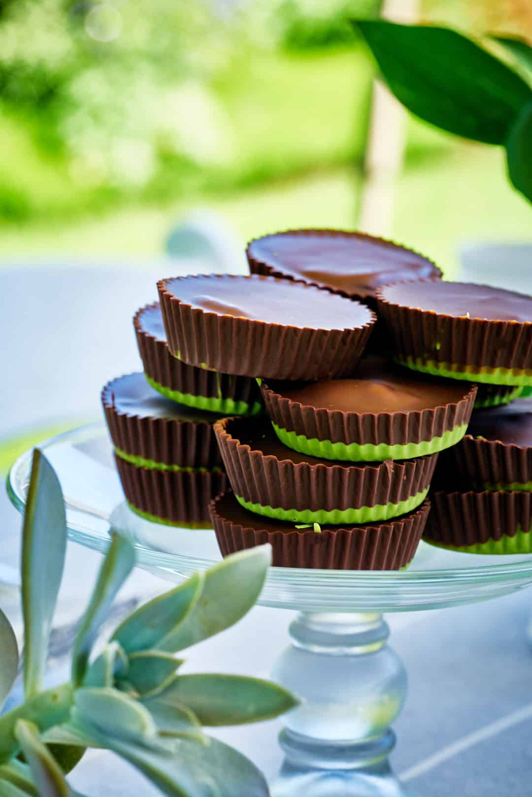 Peanut butter cups with green bottoms on a glass cake pedestal in a garden.